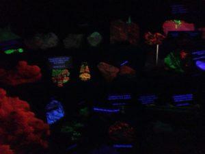 Fluorescence M-M